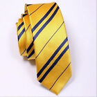 FANCY DRESS COSPLAY HARRY POTTER STYLE HOUSE TIES FILM REPLICA WORLD BOOK DAY UK