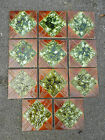 SET OF 11 VICTORIAN FIREPLACE TILES - GOOD CONDITION