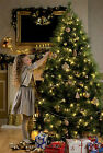 4 5 6ft 7ft 8ft Luxury Long Needle Pine Green Artificial Christmas Tree NOT LIT
