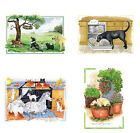 Greeting Card - Blank/Birthday -Alisons Animals -Pets, Cats, Dogs, Horses, Sheep