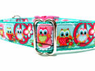 1 inch wide Dog Collar, Owls with Peace adjustable Collar, Small, Medium, Large