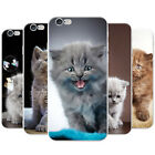 Cute Adorable Kittens Causing Mayhem Hard Case Phone Cover for Apple Phones