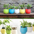 Colorful  Mini Round Plastic Planter Flower Cactus Pot Home Office Desk DecorsFO