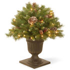 National Tree Company Frosted Berry PVC Made Clear Lights Porch Bush with Cones