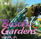BUSCH GARDENS TAMPA 2-DAY TICKETS $85 A PROMO DISCOUNT TOOL