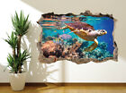 Awesome Underwater Closeup Turtle And Fish Reef Wall Sticker (36148807)