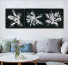 """Flowers Painting Art Abstract Wall Decor Canvas Set 16X16"""" X3 Frame Clear &Black"""