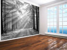Forest Beach Football Graffiti Space New York Sunset Map 3d Sea Wallpaper mural