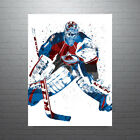 Semyon Varlamov Colorado Avalanche NHL Hockey Poster FREE US SHIPPING $15.0 USD on eBay