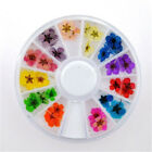 Muticolor Nail Art Tips Decoration 3D Acrylic Glitter Rhinestones DIY Wheel