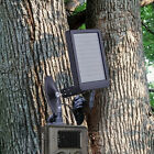 HC-500 HC-300 Solar Panel Battery Charger Hunting Way Camera Deer Game Feeder