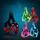 Pet Dog Safety Chest Strap Harness LED Light Flashing XS/S/M/XL Harness Collar