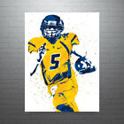Pat+White+West+Virginia+NCAA+Poster+FREE+US+SHIPPING
