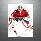 Roberto Loungo Florida Panthers NHL Hockey Poster FREE US SHIPPING $35.0 USD on eBay
