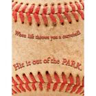 Life Throw Curveball Hit Park Baseball Sport Quote Typography 12X16 Framed Print