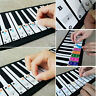 More images of 5D15 Transparent Piano Stickers Keyboard Sticker Music Gift Creative