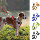 Reflective Nylon Dog Harness and Leads Leash Set for Small Dog Walking
