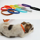 Cat Kittens Dog Collars Fadeless Washable Easy Clean Pet Identification Band