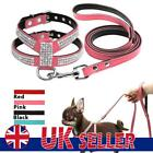Didog Small Dog Harness Leash set Suede Leather Rhinestone Pet Harnesses Leads