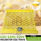 Eggs Automatic Egg Incubator Hatcher Tray Accessory Poutry Chicken 12/110/220V