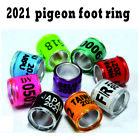 2021 8mm Pigeon Bird Label Digital Training Ring Mixed Color Tool For Chicks Leg