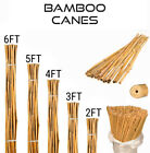 Heavy Duty Bamboo Garden Canes Strong Thick Quality Plant Support Sticks 2-6ft