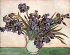 IRISES FLOWERS GARDEN VASE BY GOGH REPRO CANVAS PAPER