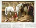 3897.The Jockey's Prayer Vintage Poster.Horse racing Design.Sports room Decor