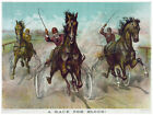 Decor Horse Poster. Fine Graphic Art. A Race for Blood. Home Wall Design. 1149
