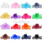 "50 YD 1"" 25mm Organza Sheer Ribbon Craft Bow Wedding Supply Decor Colors U Pick"