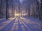 Winter Sunset Alaska Canvas Pictures Snowy Scene Wall Artwork Prints All Sizes
