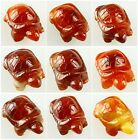 0322 Carved Red agate Agate turtle figurine