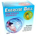 PPI Hamster Mice Play Activity Balls