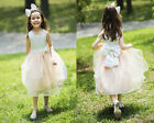 NEW Flower Girl Princess Bowknot Dress Ball Gown Party Wedding Girl's Dress
