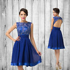 Vintage Appliques Short prom Knee Length Homecoming Dresses Evening Party Dress