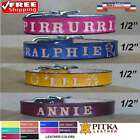 Personalized Kitten Collars - Custom Cat Collars - Unique Collars for Cats - XS