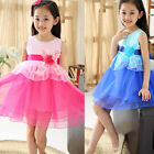 Children Organza Dance Princess Dress Stereoscopic Flower Dress Tide