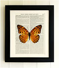 ART PRINT ON OLD ANTIQUE BOOK PAGE *FRAMED* Orange Butterfly, Vintage Dictionary