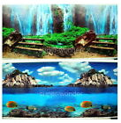"""Aquarium Fish Tank poster 20""""H Background Double sided picture waterfall fish 01"""