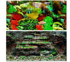 """Aquarium Fish Tank poster 16""""H Background Double sided picture color coral rock4"""