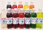 2 x 500ml BOTTLES OF SLUSH PUPPY SYRUPS SNOW CONE SYRUPS PICK YOUR OWN FLAVOURS