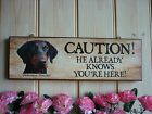 HAND MADE DOBERMAN SIGN CAUTION SIGN WARNING SIGN BEWARE OF THE DOG SIGN PLAQUE