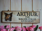 PERSONALISED BORDER COLLIE SIGN HOUSE SIGN WEATHERPROOF SIGN GATE FENCE PLAQUES