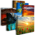 Acoustic Art Panel : Size 3'x2'x2 - Nature Art and Photos -1 Panel (6 available)