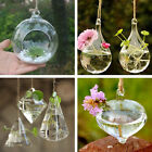 Creative Hanging Glass Flower Planter Vase Terrarium Container Home Garden Decor
