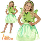 Child Forest Fairy Costume Girls Tinker Fancy Dress Pixie Outfit New Age 3-9