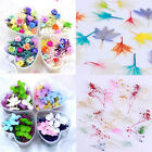 Mixed Dried Flowers 3D Nail Art DIY Nails Decoration Flower Tips Accessories DIY