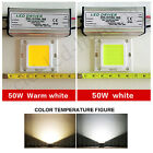2X50W LED Cool / Warm white SMD Chip Bulbs + LED Driver Transformer Power Supply