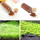 One Bottle of Aquarium Grass Seeds Carpet Water Aquatic Plant Grass Seeds US
