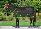 Combo Stable Rug 250gsm  Horse & Pony All Sizes